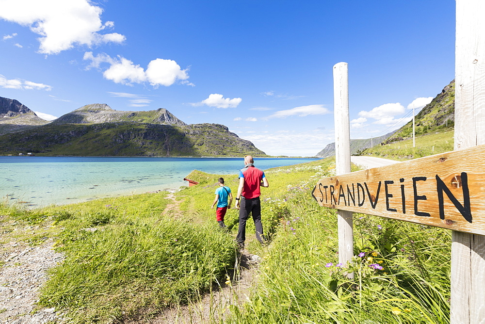Hikers on footpath in between the green meadows and turquoise sea, Strandveien, Lofoten Islands, Norway, Scandinavia, Europe
