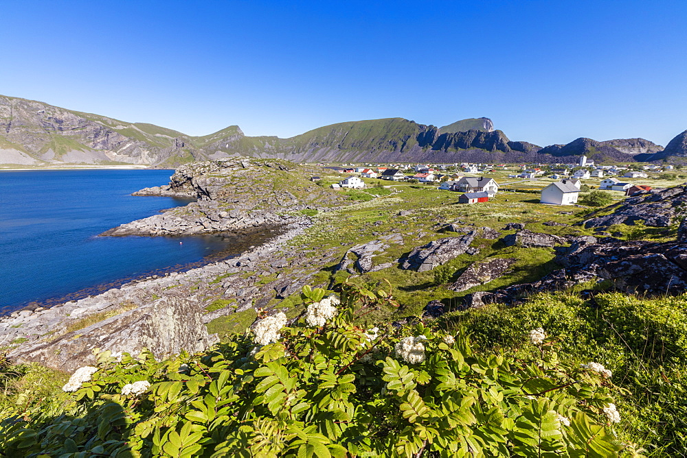 Green meadows frame the village of Sorland surrounded by sea, Vaeroy Island, Nordland county, Lofoten archipelago, Norway, Scandinavia, Europe