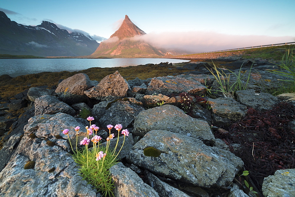 View of the rocky peak of Volanstinden lit by the midnight sun surrounded by sea, Fredvang, Moskenesoya, Lofoten Islands, Norway, Scandinavia, Europe