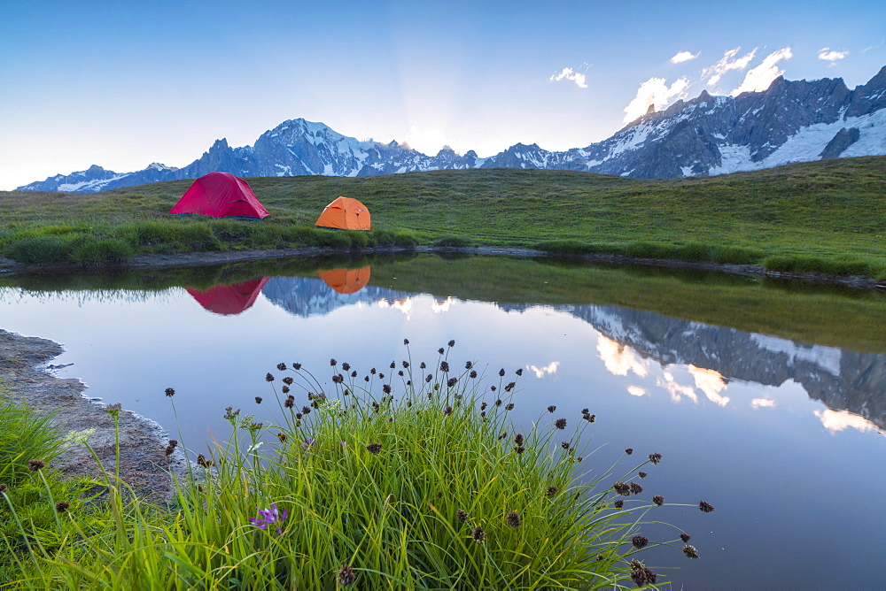 Camping tents in the green meadows surrounded by flowers and alpine lake, Mont De La Saxe, Courmayeur, Aosta Valley, Italy, Europe
