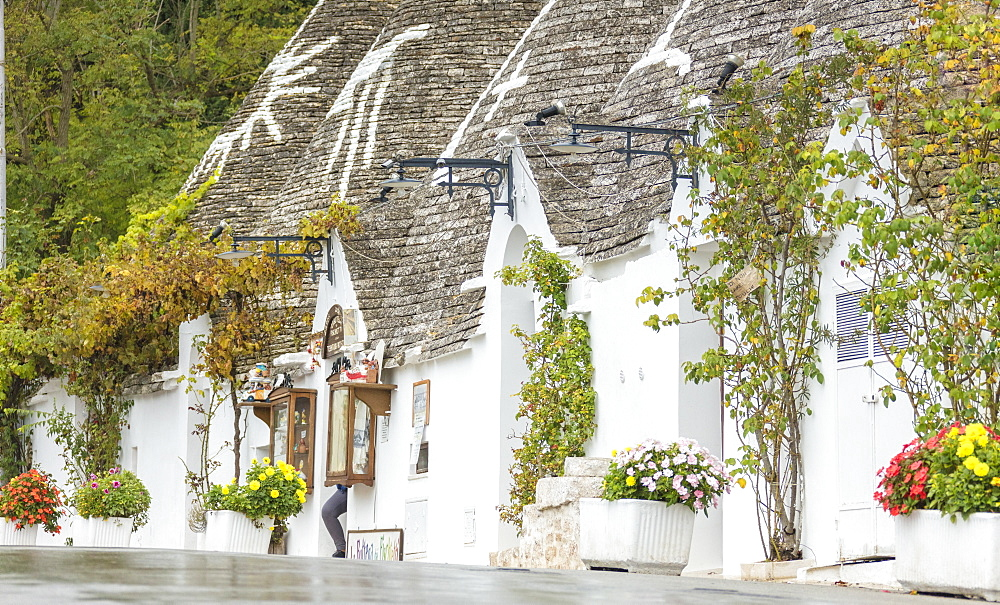The traditional huts called Trulli built with dry stone with a conical roof Alberobello province of Bari Apulia Italy Europe