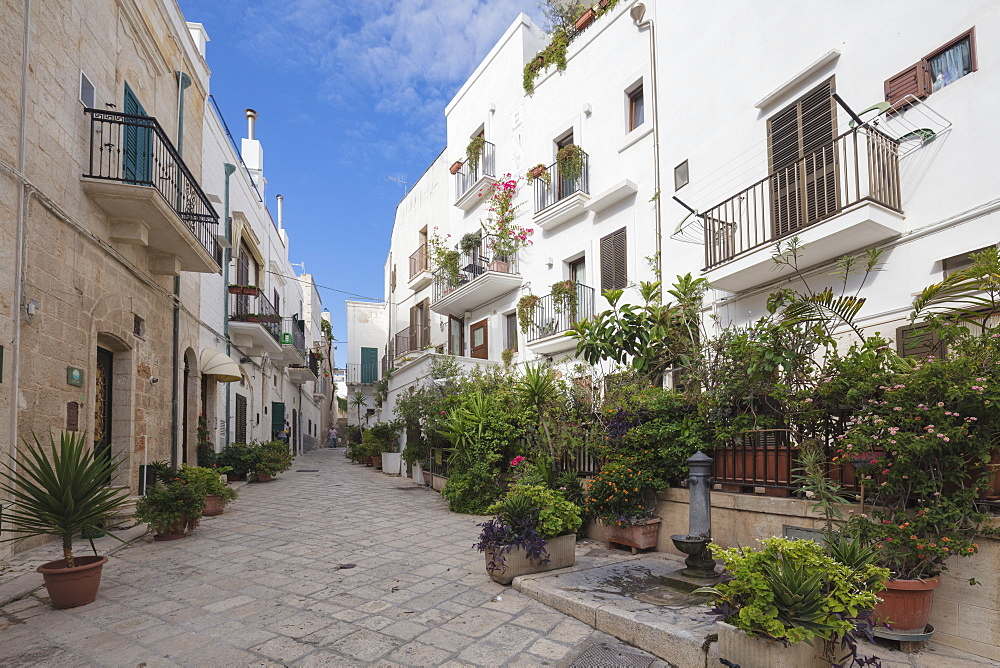 Typical alley and houses of the old town Polignano a Mare province of Bari Apulia Italy Europe