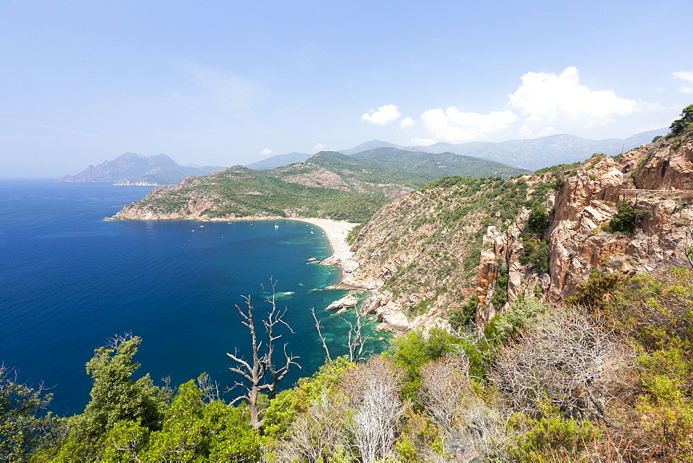 Top view of turquoise sea and sandy beach framed by green vegetation on the promontory, Porto, Southern Corsica, France, Mediterranean, Europe