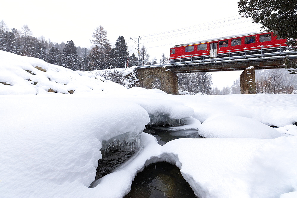 The Bernina Express train in the snowy landscape of Morteratsch, Engadine, Canton of Graubunden, Switzerland, Europe