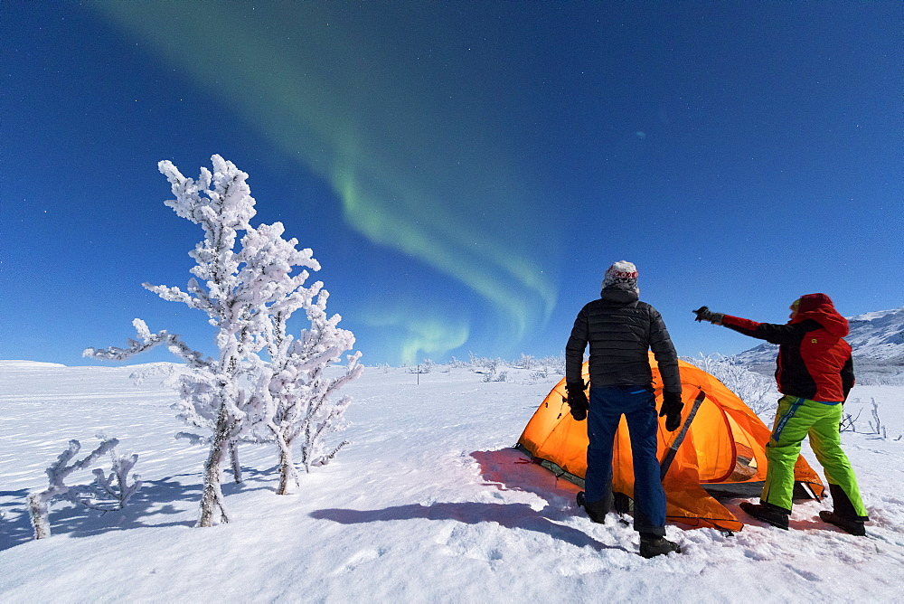 Hikers outside tent look at the Northern Lights (Aurora Borealis), Abisko, Kiruna Municipality, Norrbotten County, Lapland, Sweden, Scandinavia, Europe