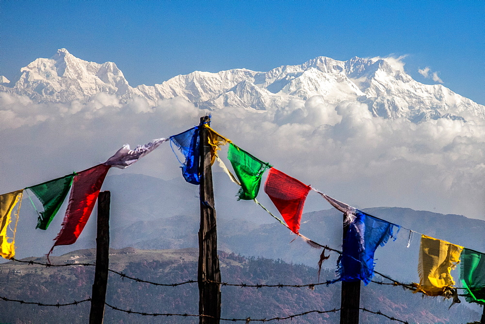 Colored prayer flags flutter in front of the majestic Kanchenjunga, the third highest peak in the world, Sandakphu, West Bengal, India, Asia