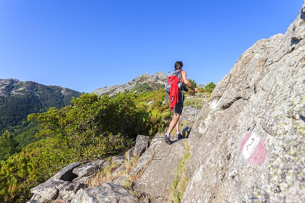 Hiker on path towards Monte Capanne, Elba Island, Livorno Province, Tuscany, Italy - 1179-2647