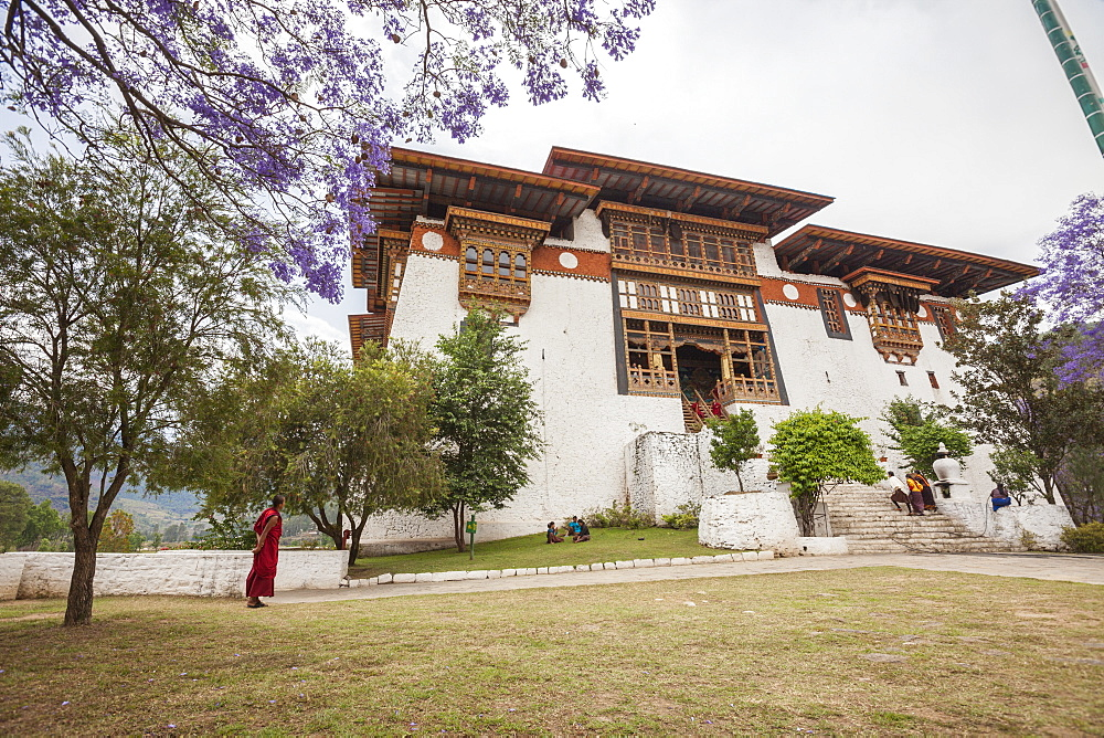 The garden at the entrance of the Punakha Dzong where there are trees of different species, Bhutan, Asia