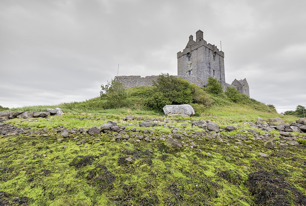 Dunguaire Castle, Kinvara, Galway, Connacht, Republic of Ireland, Europe