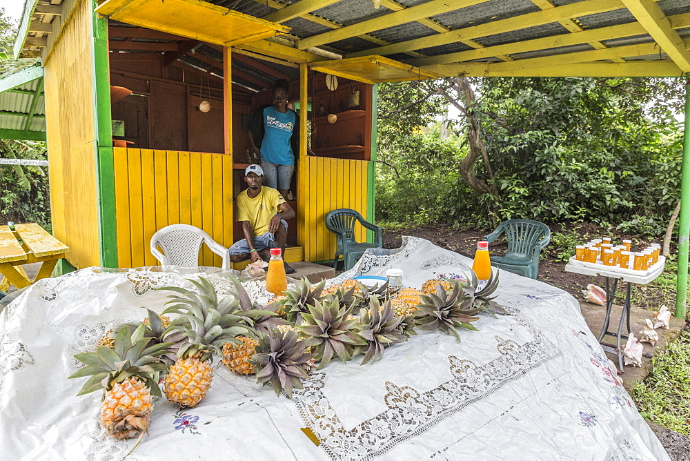 Two guys selling pineapple and products such as pulp and juice at a kiosk at the side of the Big Tree Drive, Antigua, Leeward Islands, West Indies, Caribbean, Central America