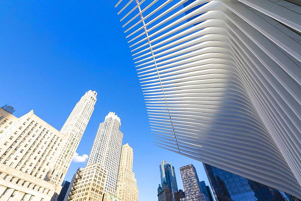 The Oculus Building by Santiago Calatrava, One World Trade Center, Lower Manhattan, New York City, United States of America, North America