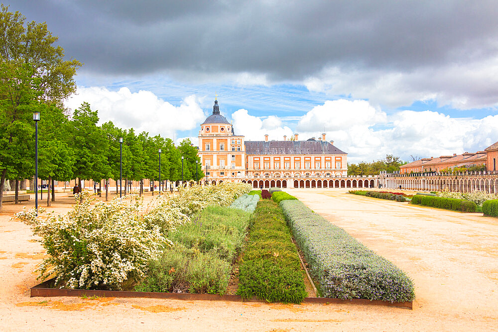 Ornamental plants, Royal Palace of Aranjuez (Palacio Real), Community of Madrid, Spain - 1179-3397