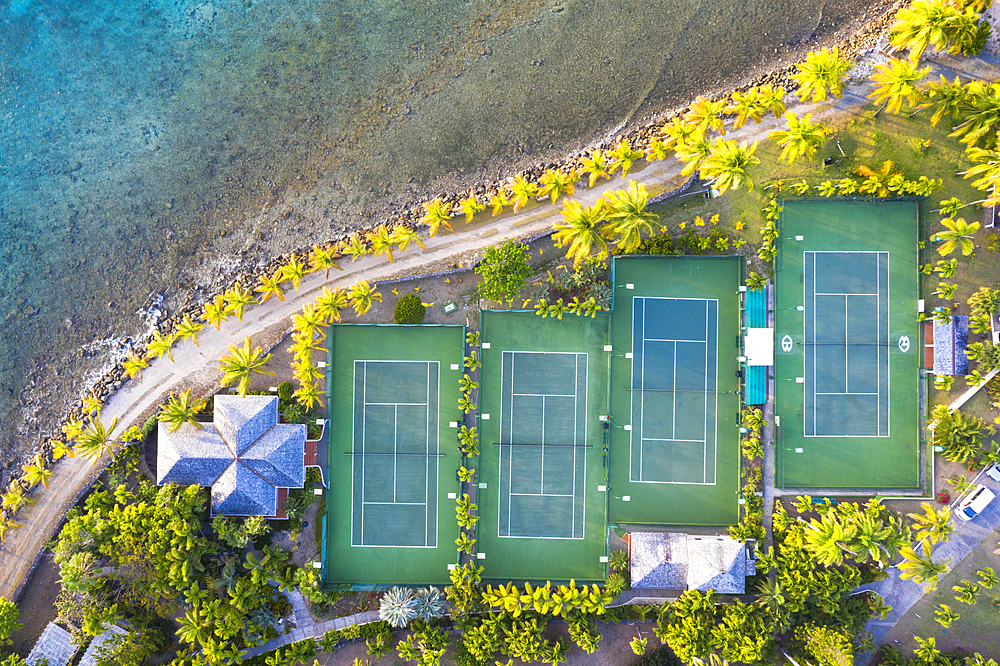 Tennis courts and palm trees in the luxury Curtain Bluff resort viewed from above, Old Road, Antigua, Leeward Islands, West Indies, Caribbean, Central America - 1179-3882