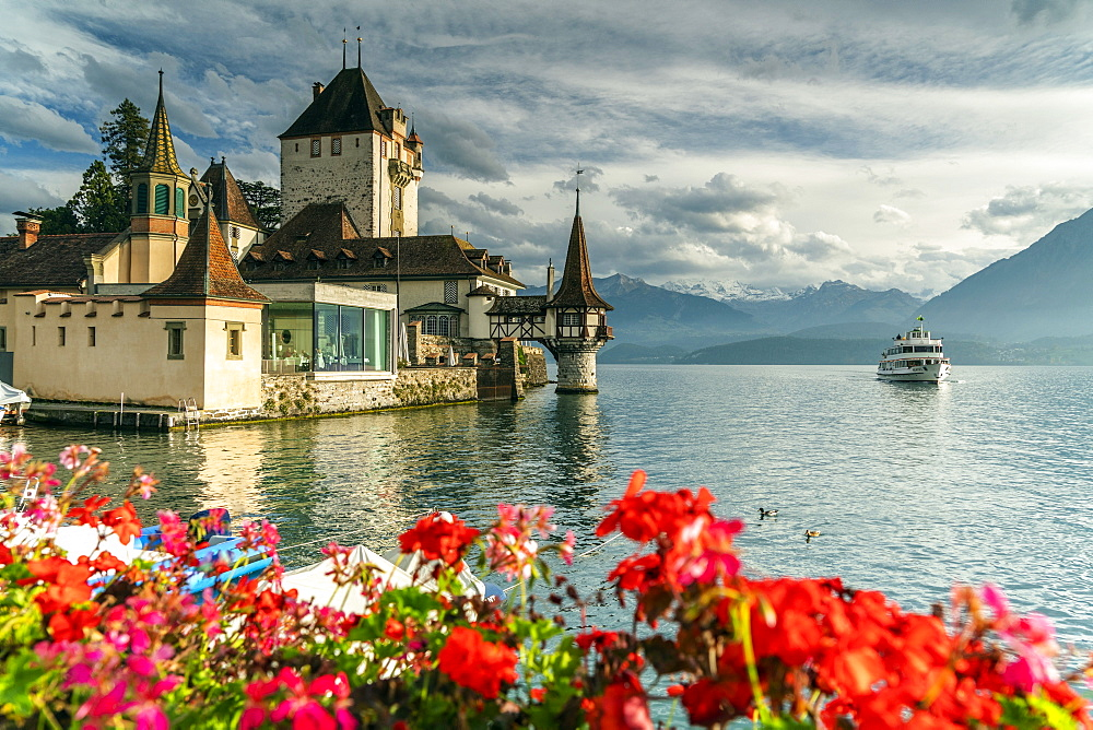 Flowers framing Oberhofen Castle and Lake Thun, Canton of Bern, Switzerland, Europe