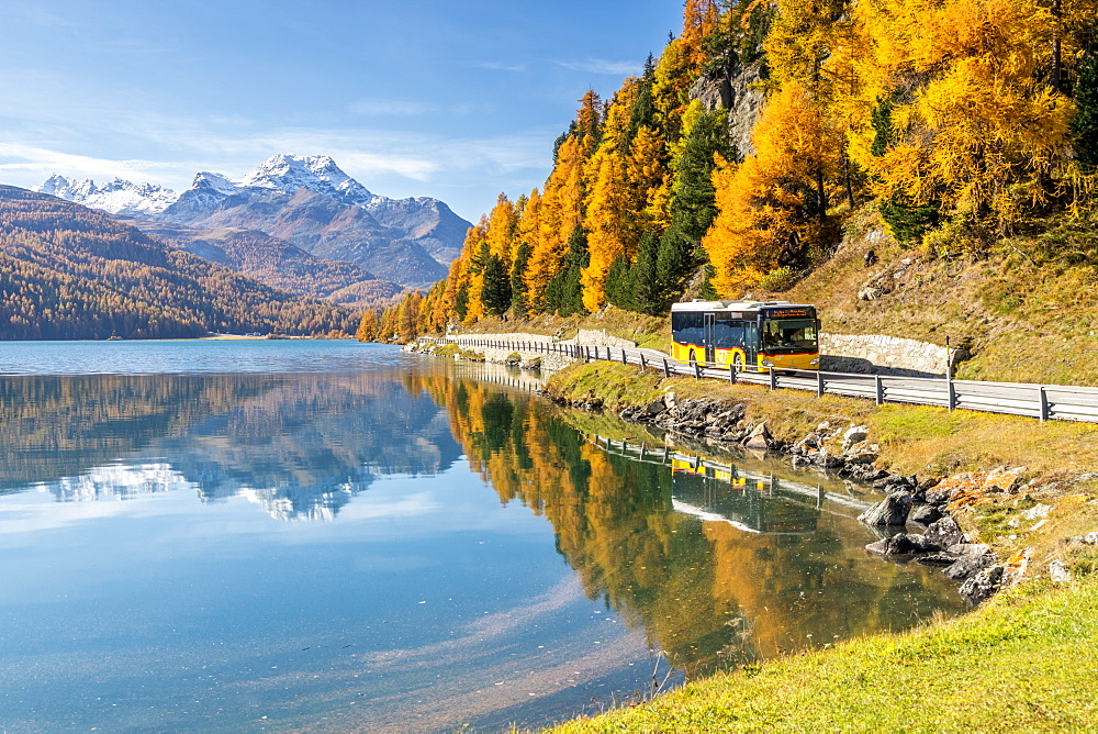 Yellow bus travelling on shores of Lake Silvaplana in autumn, St. Moritz, Engadine, canton of Graubunden, Switzerland, Europe