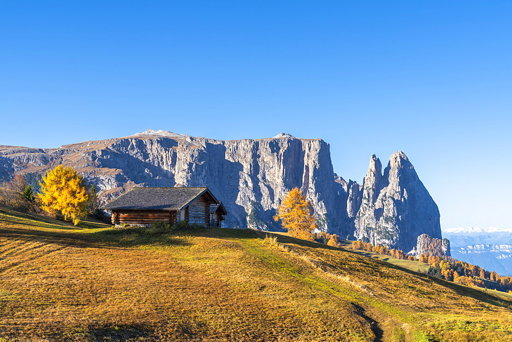 Traditional huts at Alpe di Siusi/Seiser Alm in autumn with Sciliar peaks in background, Dolomites, South Tyrol, Italy