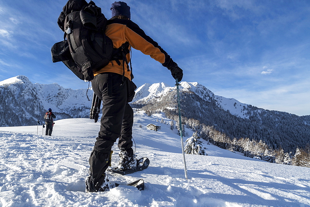 Snowshoe hiker walking in the snowy landscape, Gerola Valley, Valtellina, Orobie Alps, Lombardy, Italy, Europe
