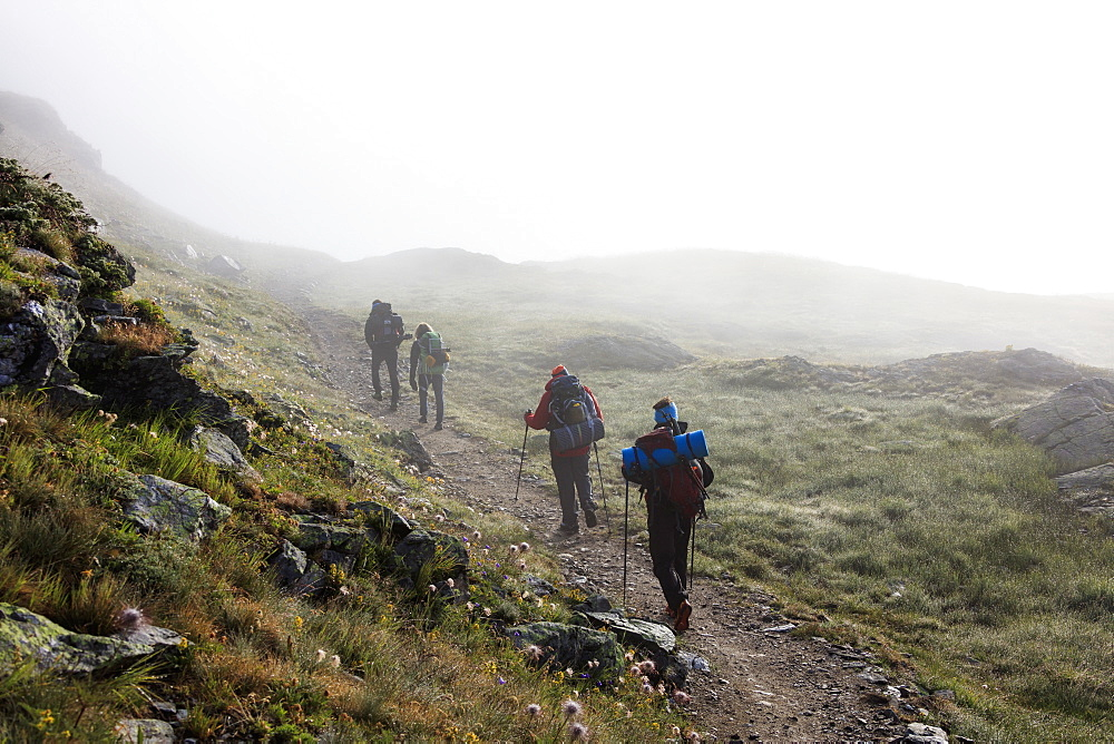 Hikers in the misty landscape at dawn, Minor Valley, High Valtellina, Livigno, Lombardy, Italy, Europe