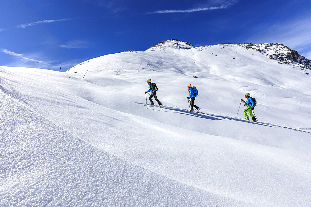 Alpine skiers proceed at high altitude on a sunny day in the snowy landscape, Stelvio Pass, Valtellina, Lombardy, Italy, Europe