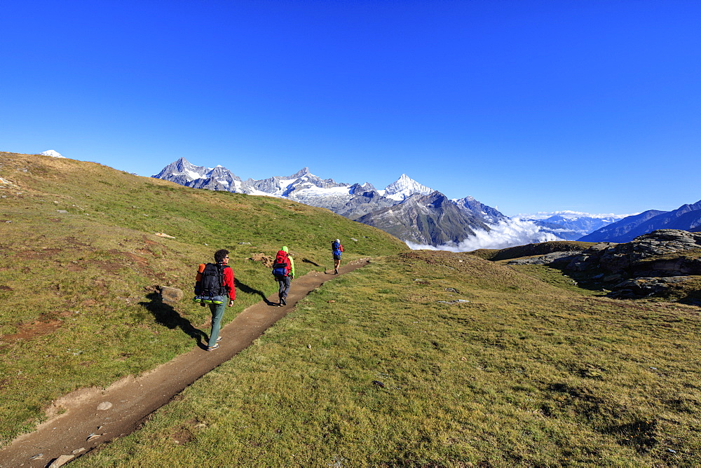 Hikers on a mountain path proceed towards the high peaks in a clear summer day, Gornergrat, Canton of Valais, Swiss Alps, Switzerland, Europe
