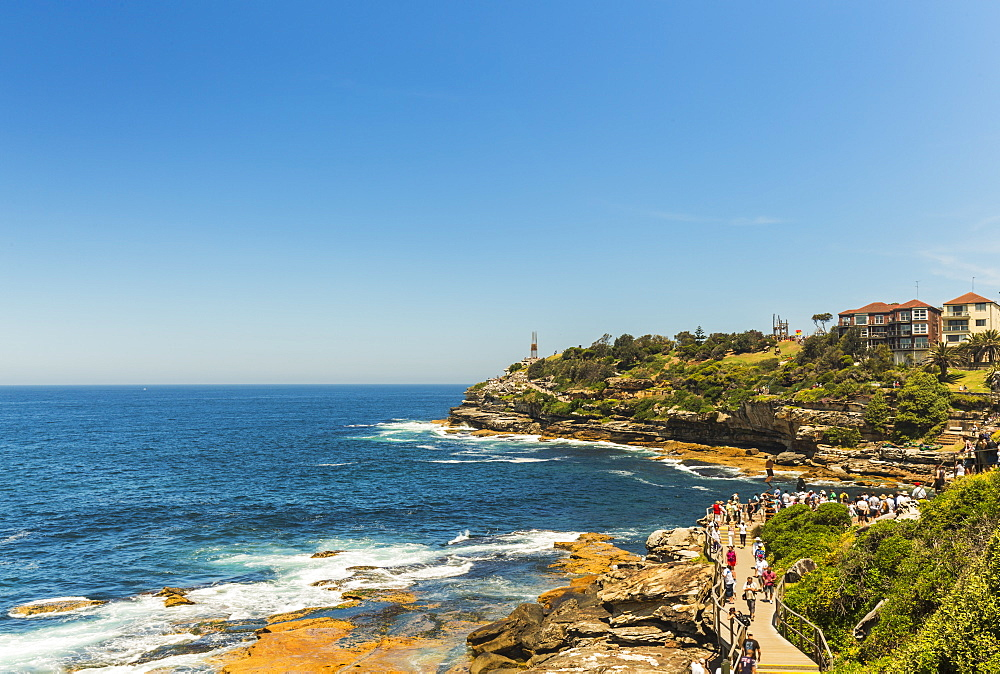 Bondi Coast, Sydney, New South Wales, Australia, Pacific - 1181-10