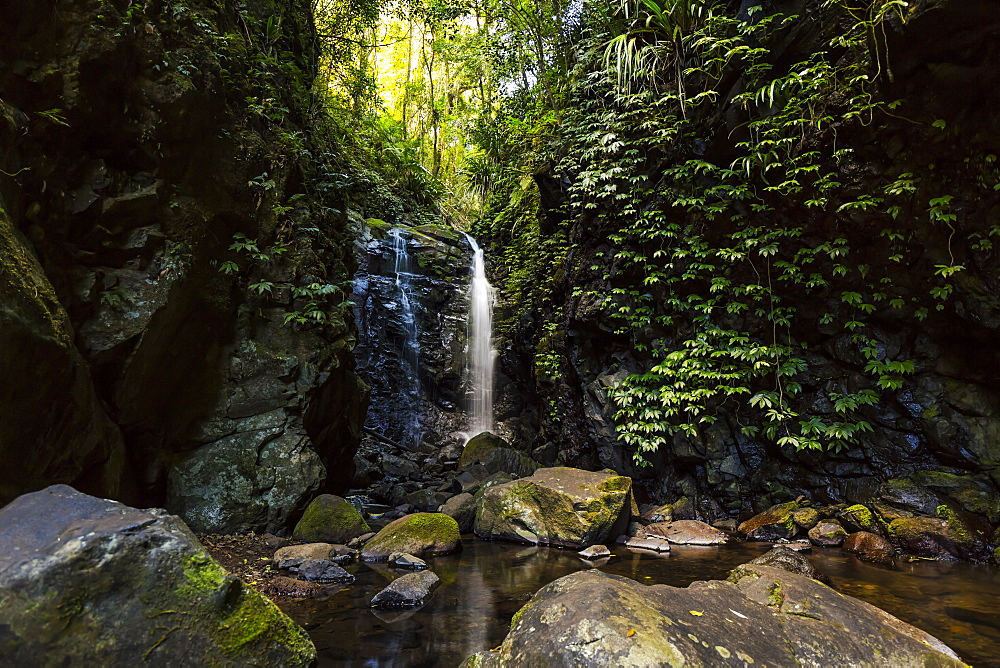 Waterfall at Lamington National Park, Queensland, Australia, Pacific - 1181-6