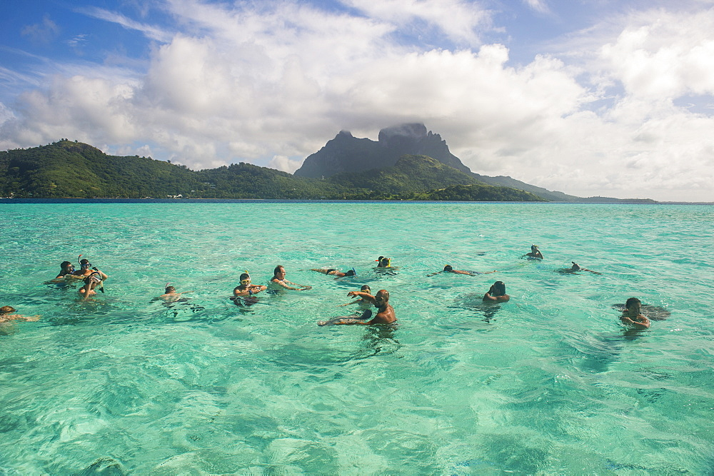 Tourists swimming with sting rays, Bora Bora, Society Islands, French Polynesia, Pacific