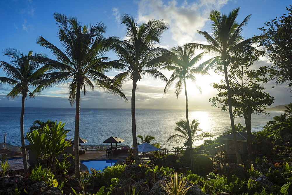 Palm trees in backlight in Niue, South Pacific, Pacific
