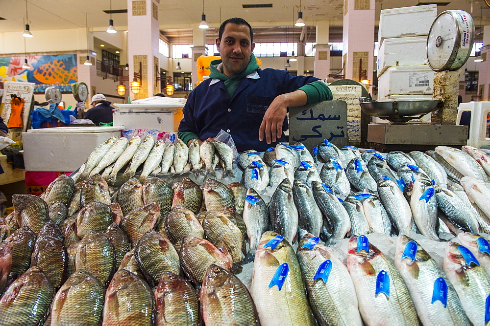 Local fisherman showing his fish, Fish Market, Kuwait City, Kuwait, Middle East