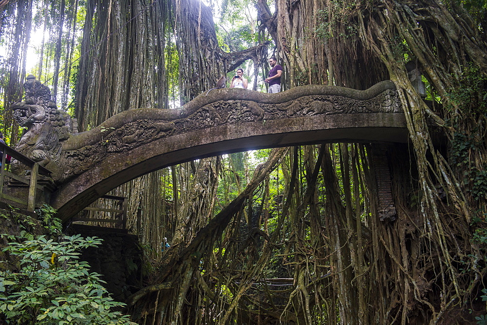 Very beautiful carved bridge with overgrowing trees, Sacred Monkey Forest Sanctuary, Ubud, Bali, Indonesia, Southeast Asia, Asia