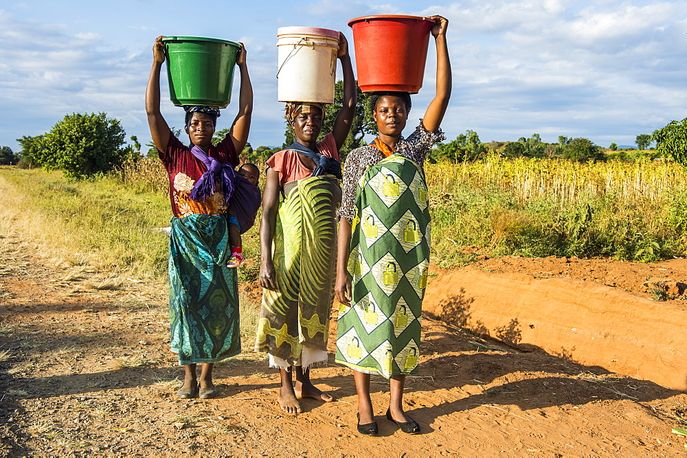 Local women carrying buckets on their head, Malawi, Africa