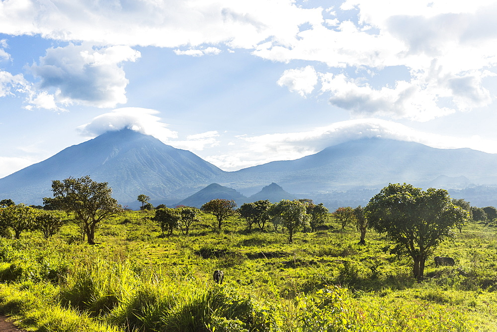 The volcanic mountain chain of the Virunga National Park, Democratic Republic of the Congo