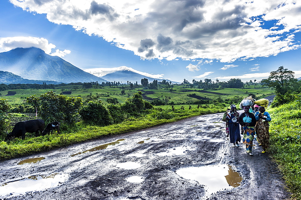 Local women carrying goods on their heads with the volcanic mountain chain of the Virunga National Park behind, after rain, Democratic Republic of the Congo, Africa