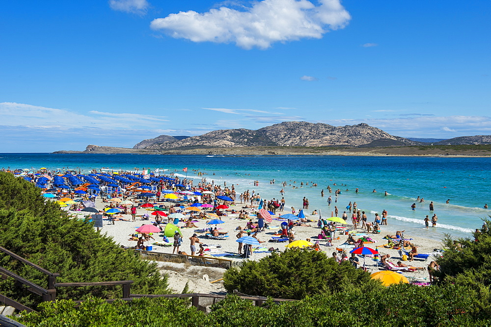 Beach of Pelosa, Sardinia, Italy, Mediterranean, Europe