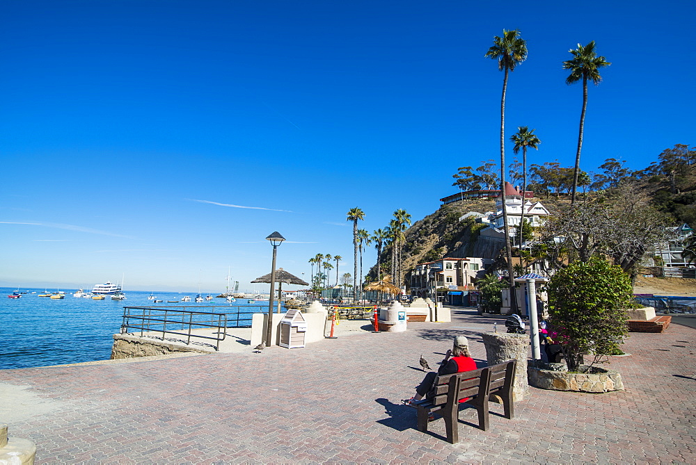 The waterfront of Avalon, Santa Catalina Island, California, USA