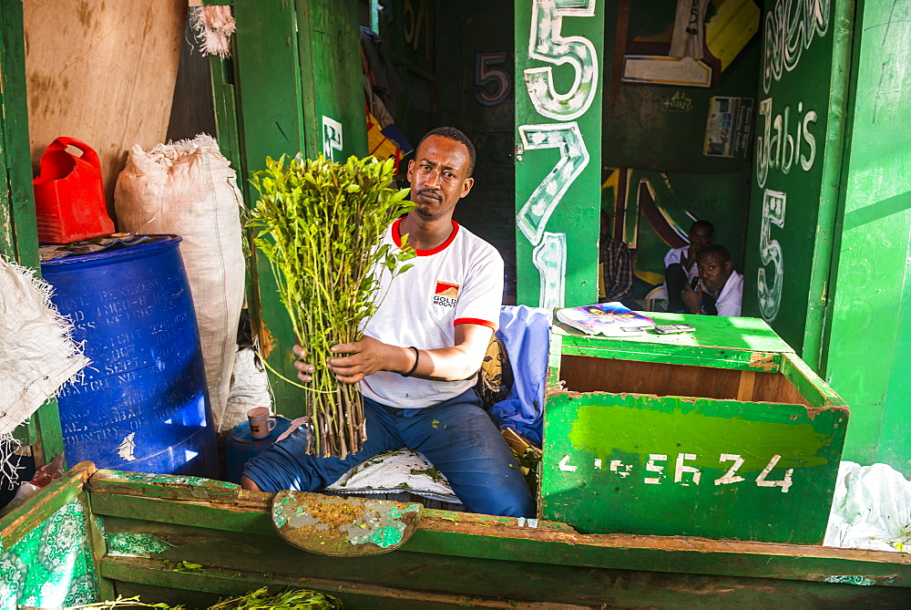 Man selling khat in the market of Hargeisa, Somaliland, Somalia, Africa
