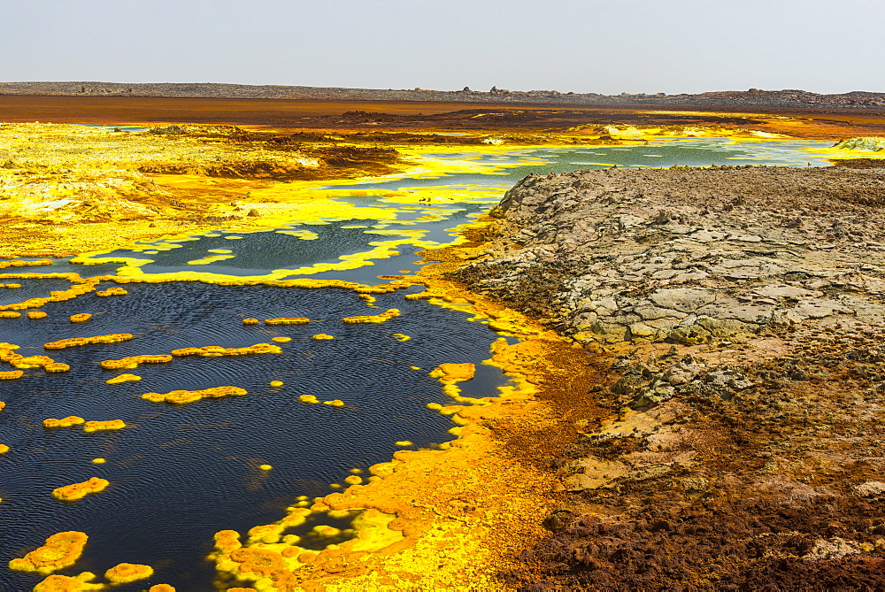 Colourful spings of acid in Dallol, hottest place on earth, Danakil depression, Ethiopia, Africa - 1184-1851