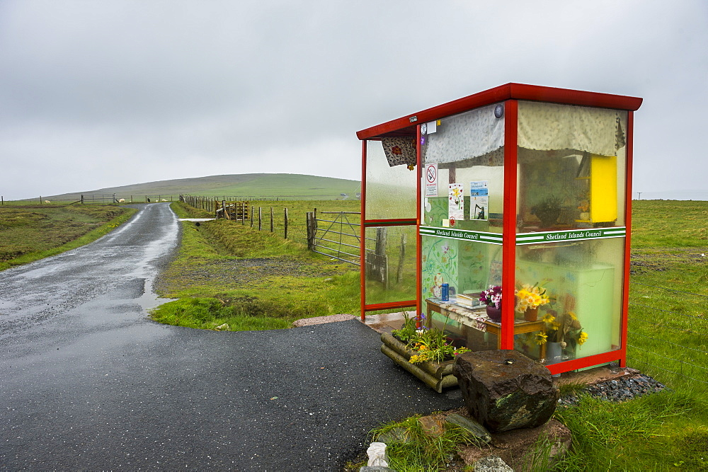 Unusual Bobby's Bus Shelter, Unst, Shetland Islands, Scotland, United Kingdom, Europe