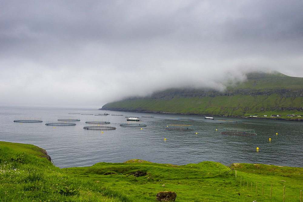 Fish farm in Estuyroy, Faroe Islands, Denmark, Europe