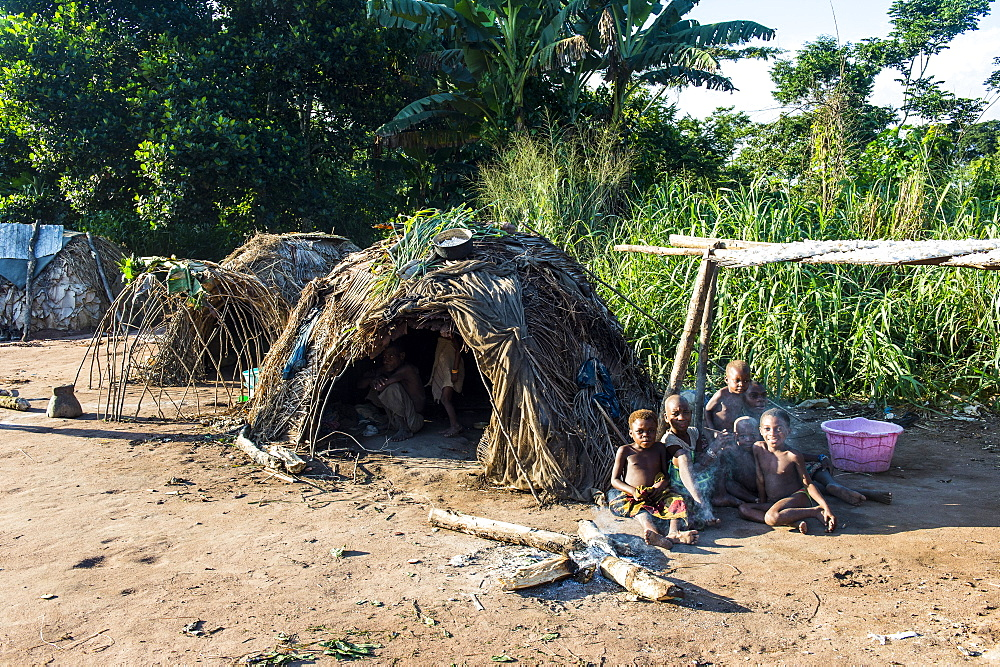 Traditional Baka pygmie village in the Unesco world heritage sight Dzanga-Sangha Special Reserve, Central African Republic - 1184-2014