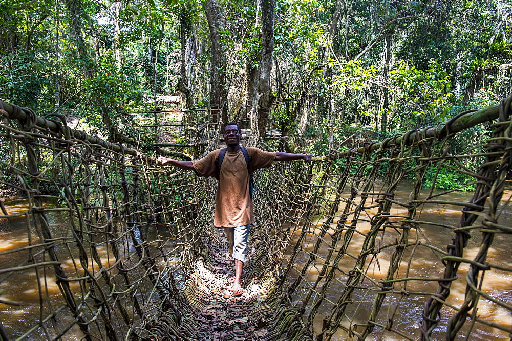 Pygmie walking above a hand made vine bridge in the Unesco world heritage sight Dzanga-Sangha Park, Central African Republic - 1184-2019