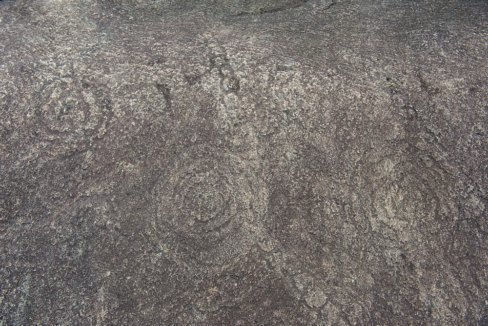 Prehistoric rock carvings in the Unesco world heritage sight Lope national park, Gabon