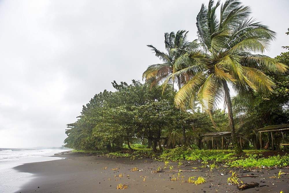 Black volcanic sand on six mile beach near Limbe, southern Cameroon, Africa