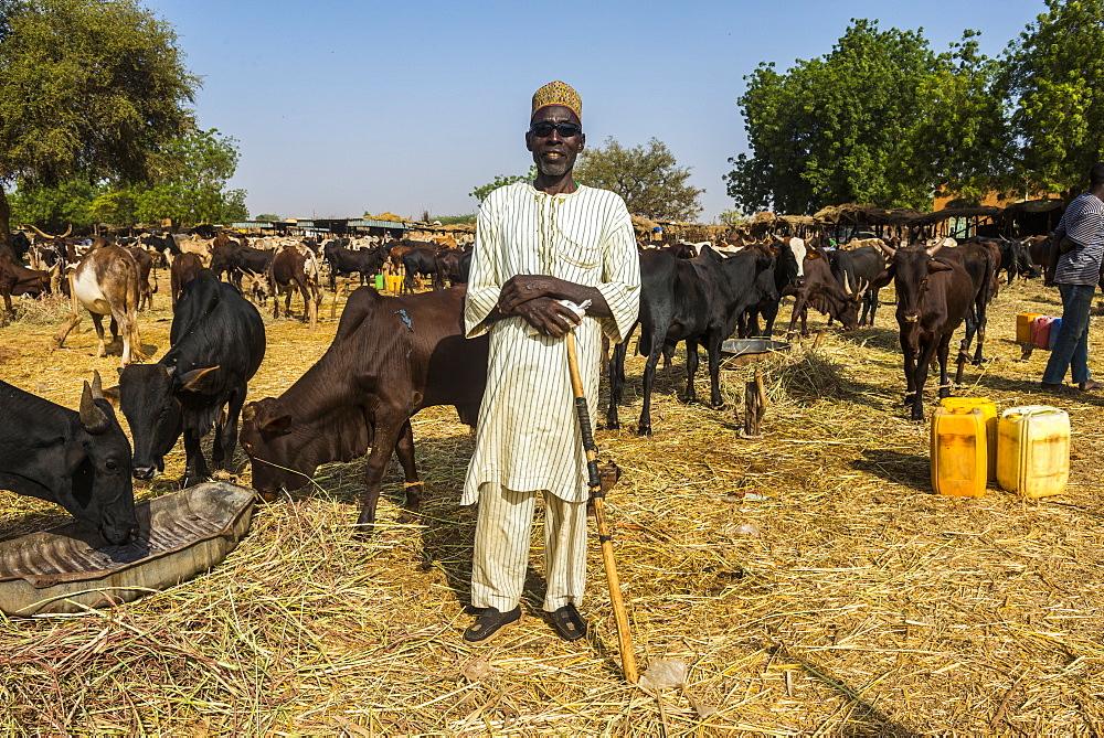 Proud farmer on the animal market in Niamey, Niger, Africa