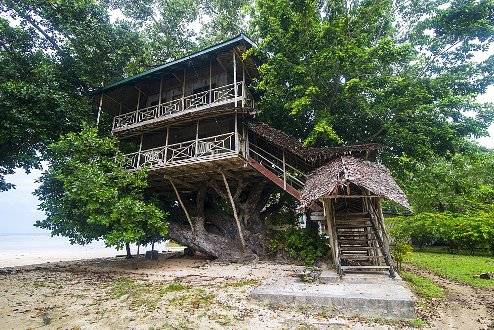 Giant tree house along the Boluminsky highway, Kavieng, New Ireland, Papua New Guinea, Pacific