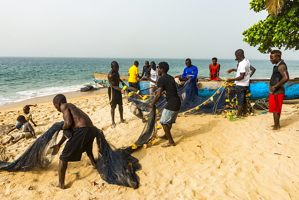 Local fishermen pulling their nets on a beach in Robertsport, Liberia - 1184-2262