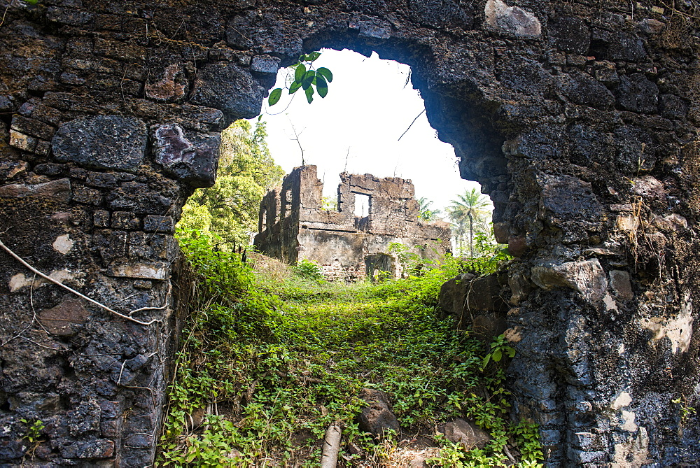 Old ruins of the former slave colony, Bunce island, Sierra Leone, West Africa, Africa