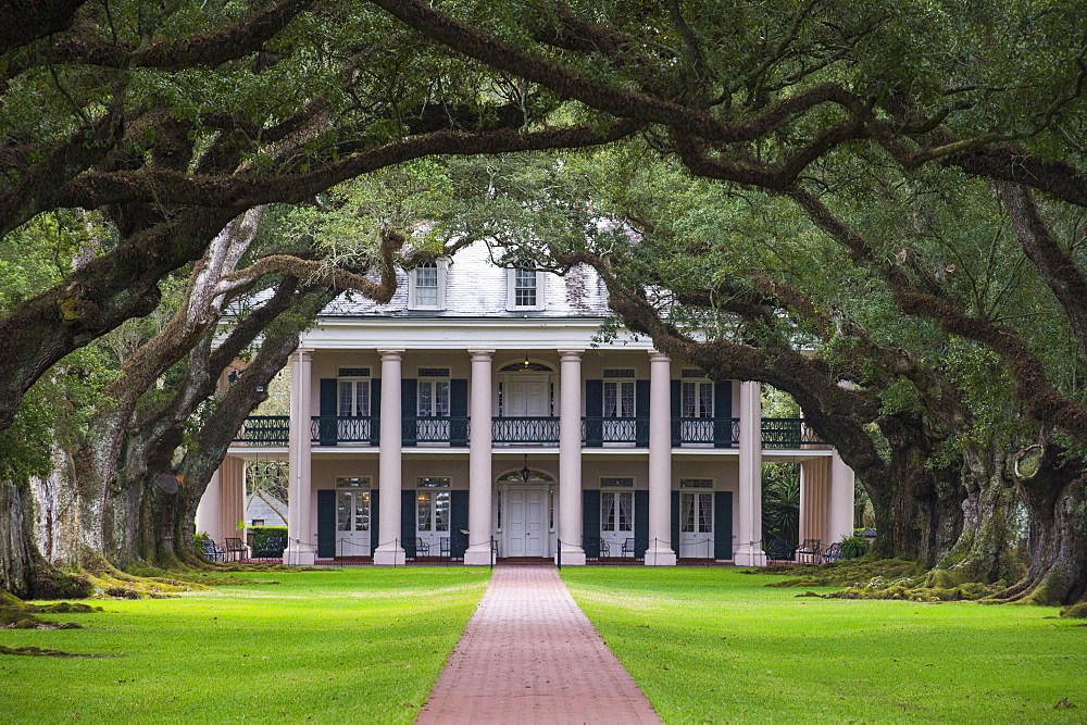 Oak tree alley and planation house in the Oak Alley plantation, Louisiana, United States of America, North America