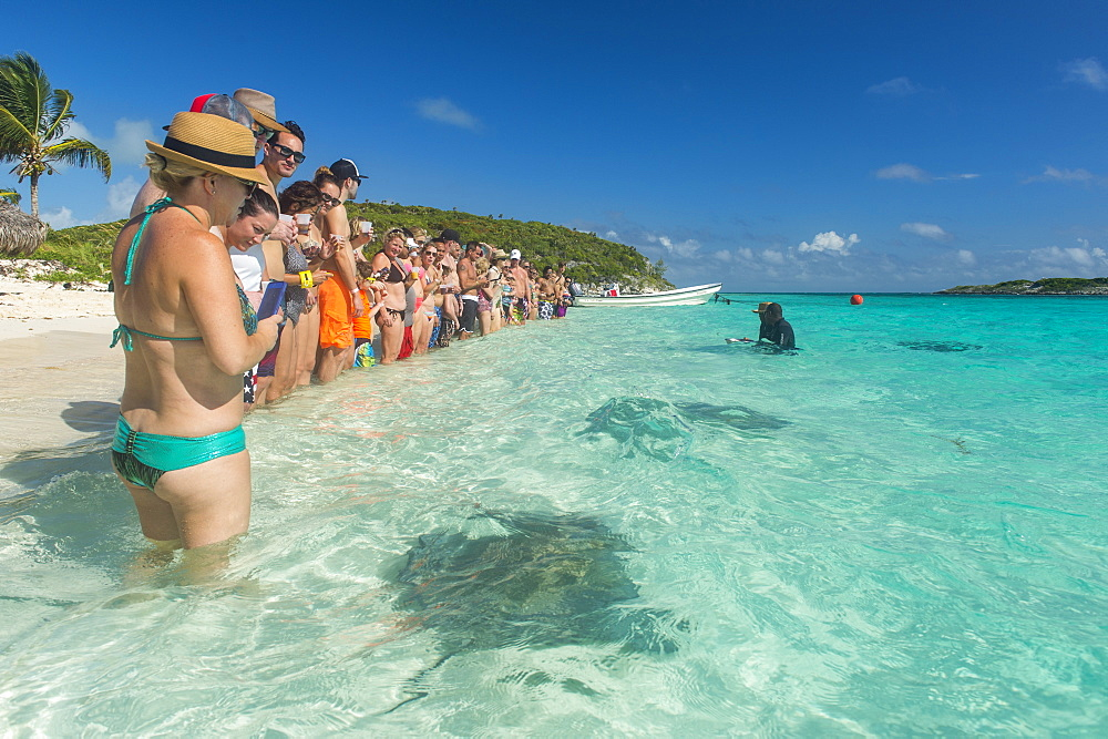Tourists standing on a white sand beach with rays swimming in the turquoise waters, Exumas, Bahamas, West Indies, Caribbean, Central America - 1184-320