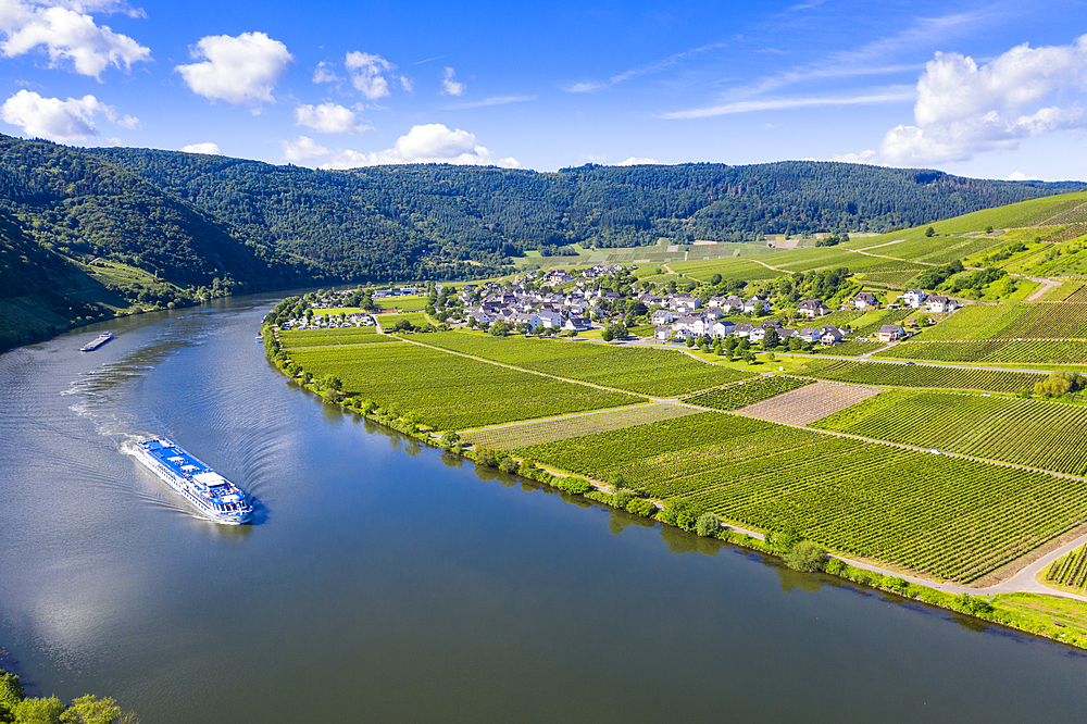River cruise ship on the Moselle at Mehring, Moselle valley, Rhineland-Palatinate, Germany, Europe